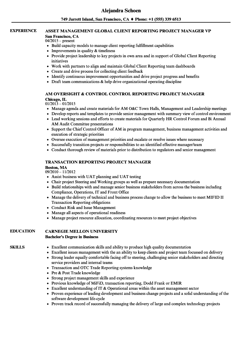reporting project manager resume samples