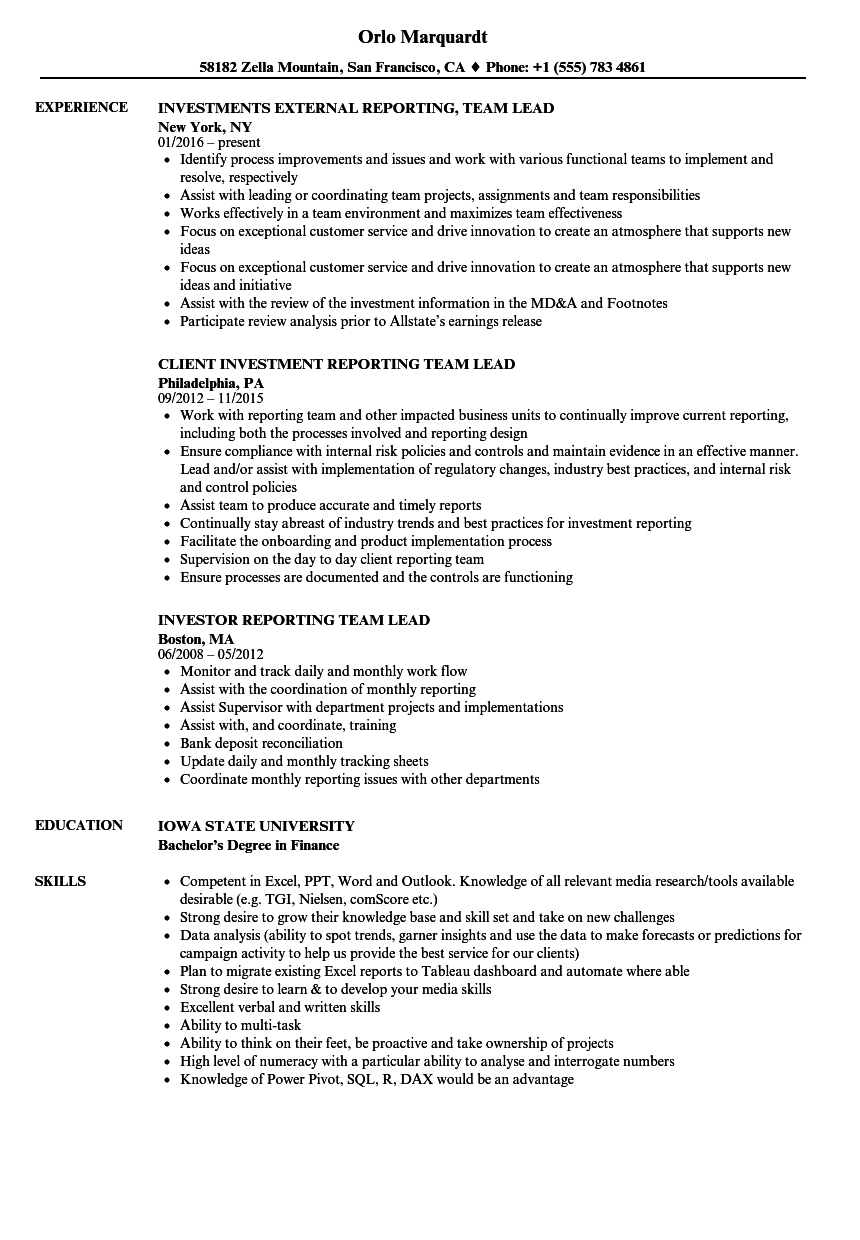 reporting team lead resume samples