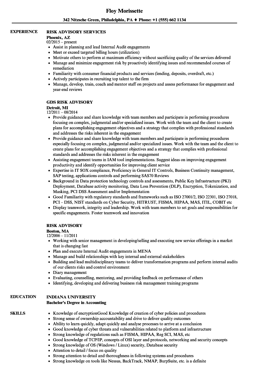 Risk Advisory Resume Samples   Velvet Jobs