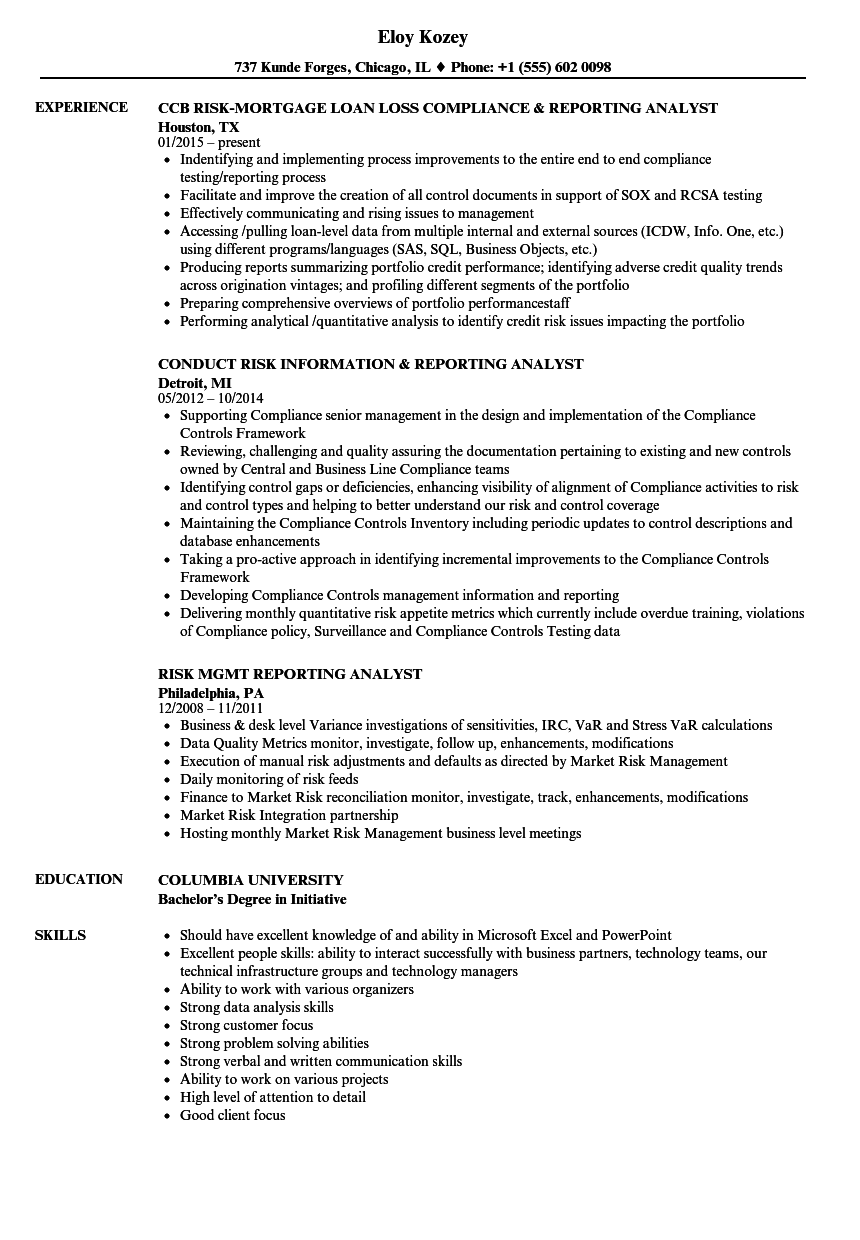 risk analyst  risk reporting resume samples