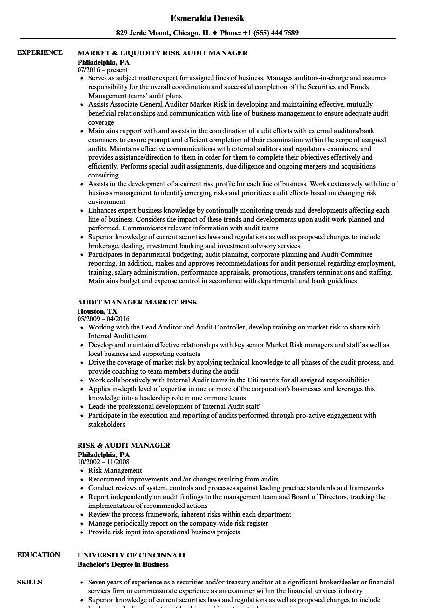Risk & Audit Manager Resume Samples | Velvet Jobs