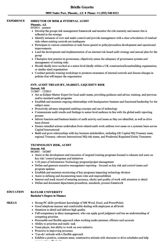risk audit resume samples velvet jobs