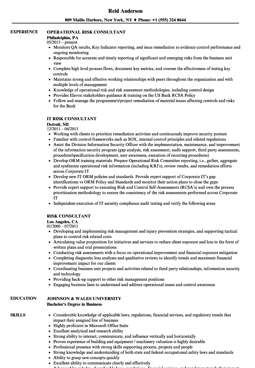 Risk Consultant Resume Samples | Velvet Jobs
