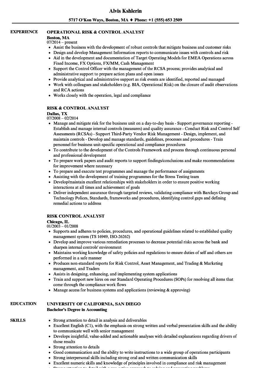 risk  u0026 control analyst resume samples