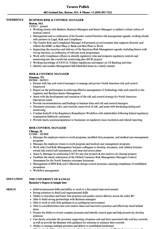 risk  u0026 control manager resume samples