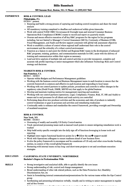 risk  u0026 control resume samples