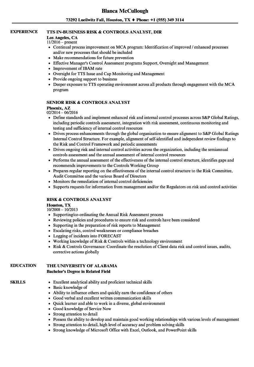 risk  u0026 controls analyst resume samples
