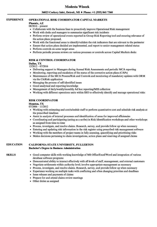 risk coordinator resume samples