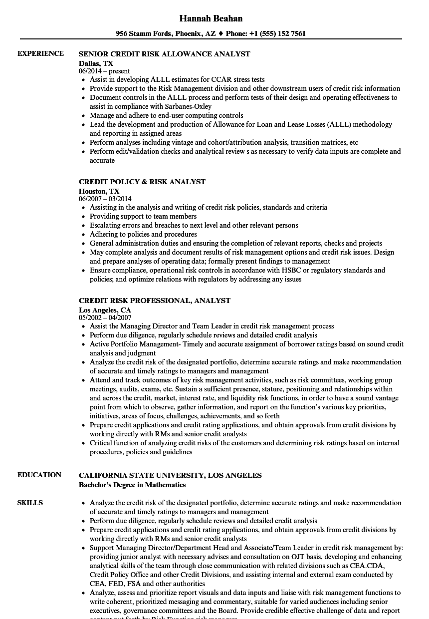 Download Risk Credit Analyst Resume Sample As Image File