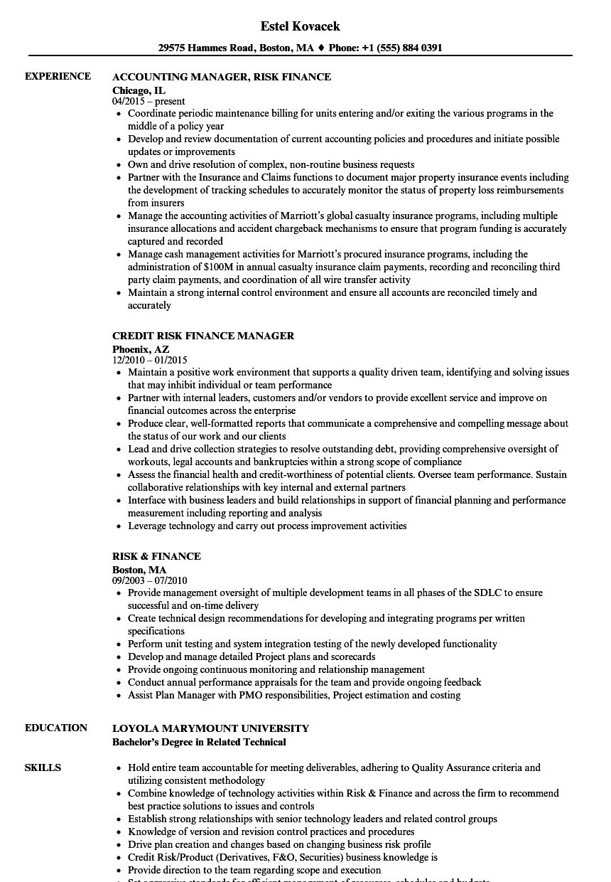 risk  u0026 finance resume samples