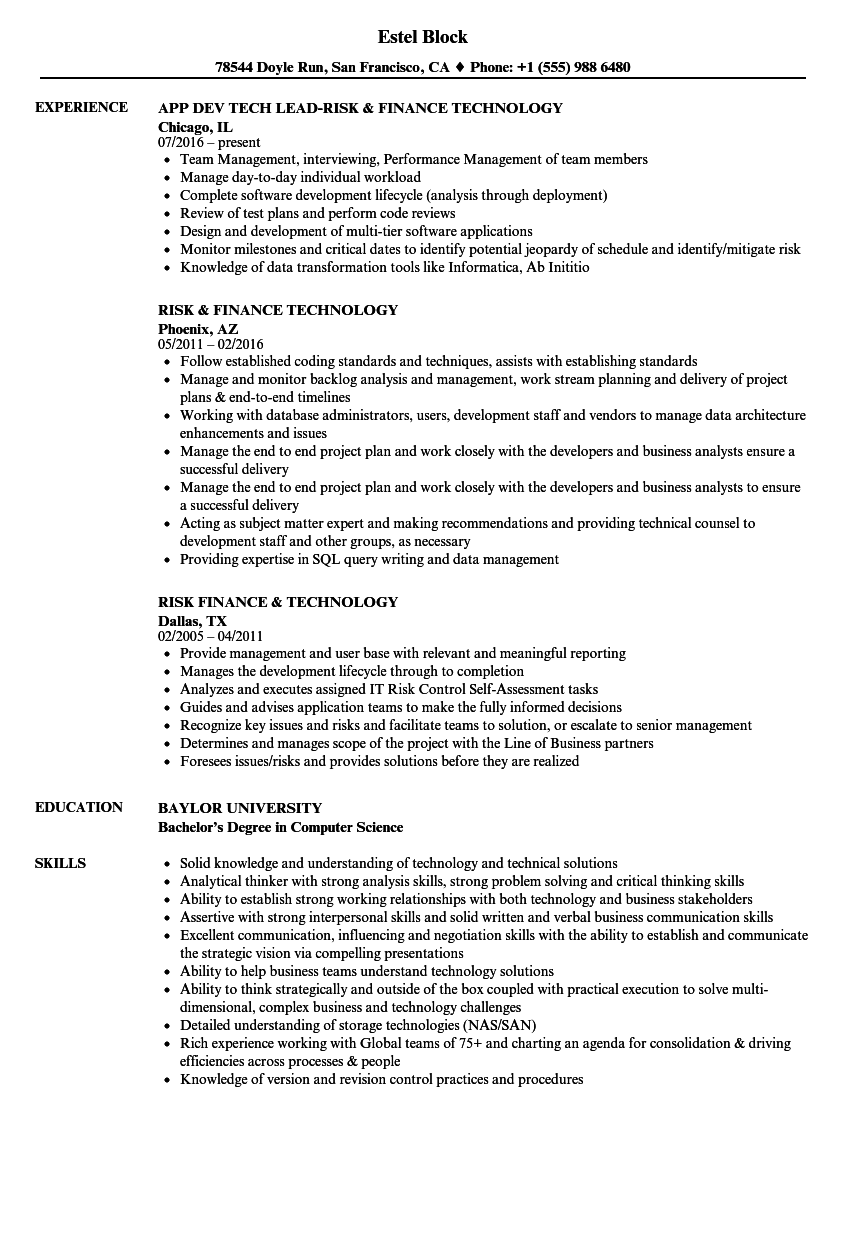 Risk & Finance Technology Resume Samples | Velvet Jobs
