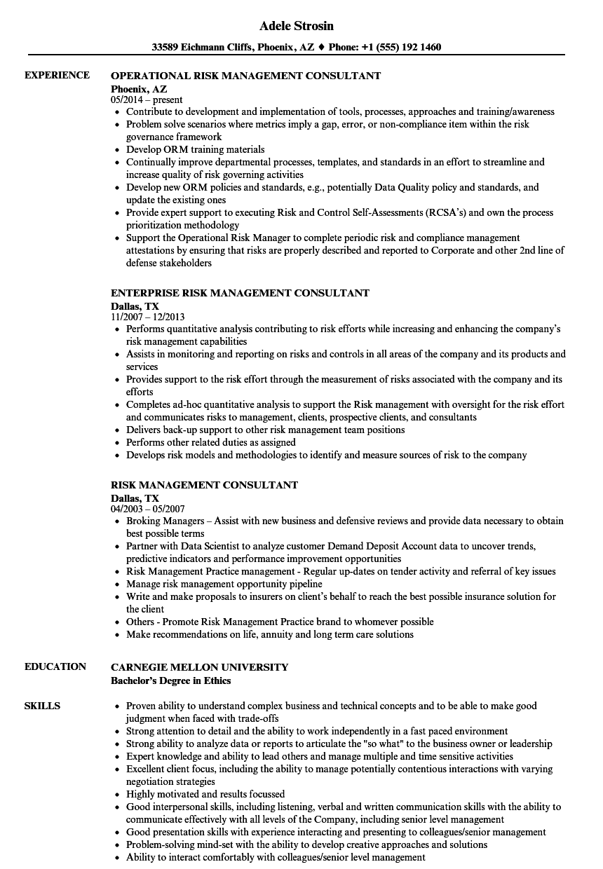 Risk Management Consultant Resume Samples | Velvet Jobs