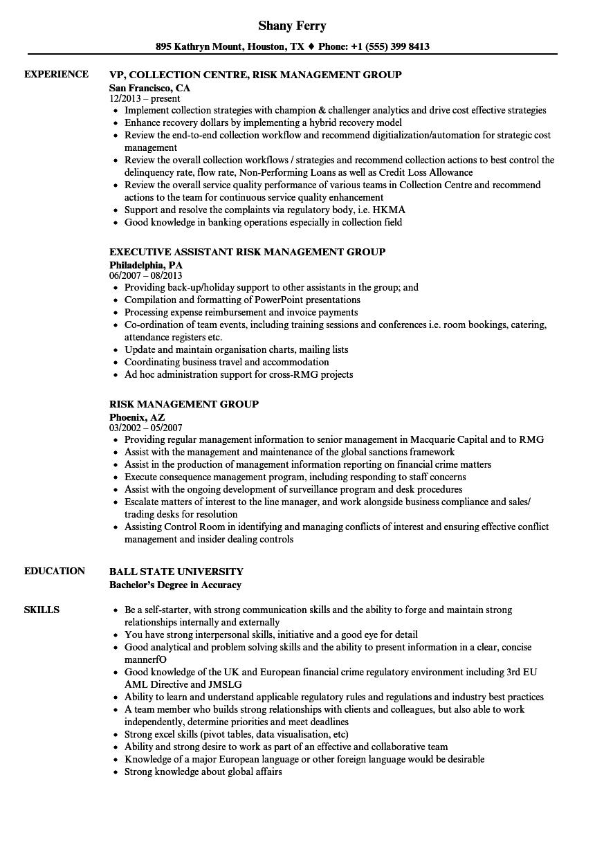 Risk Management Group Resume Samples | Velvet Jobs