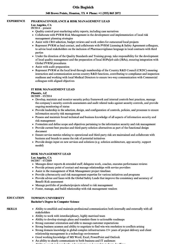 risk management lead resume samples