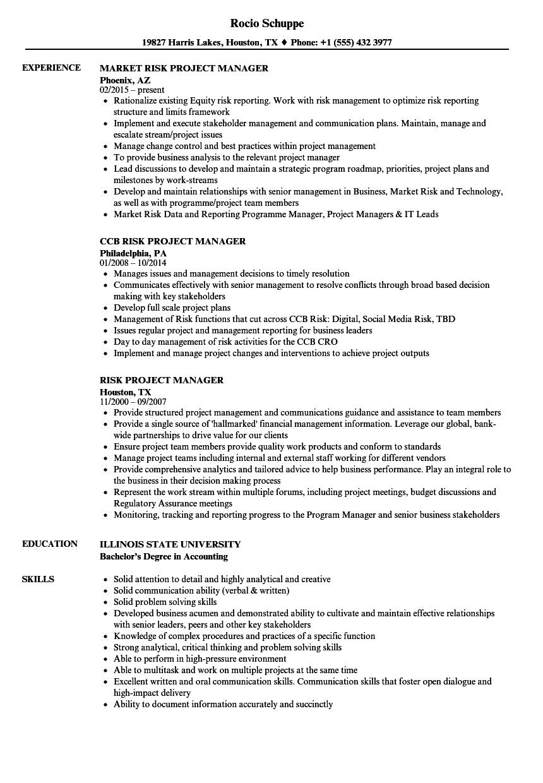 Risk Project Manager Resume Samples Velvet Jobs