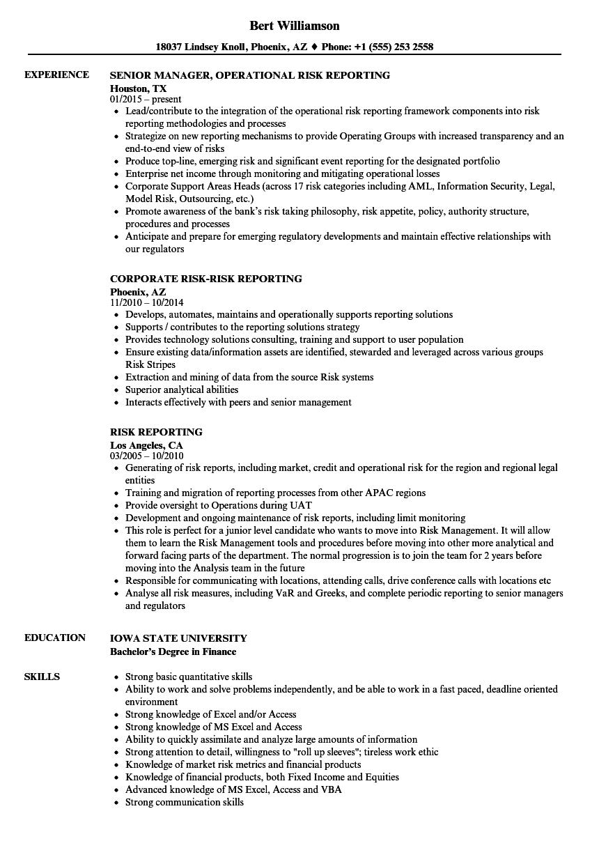 Risk Reporting Resume Samples Velvet Jobs