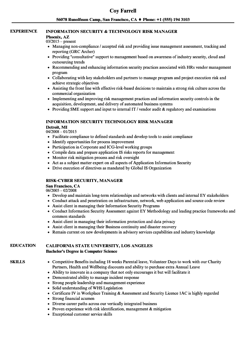 Risk & Security Manager Resume Samples | Velvet Jobs