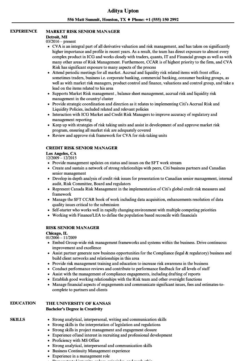 Risk Senior Manager Resume Samples | Velvet Jobs