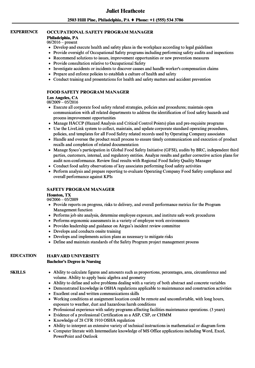 Download Safety Program Manager Resume Sample As Image File  Program Manager Resumes