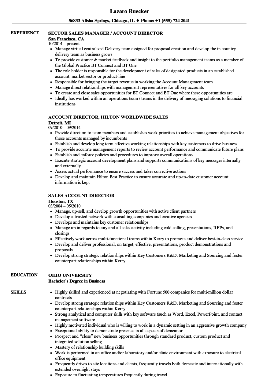 sales account director resume samples