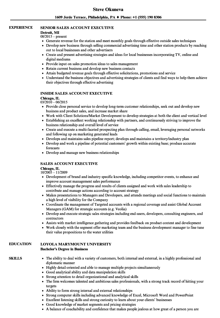 sales account executive resume samples velvet jobs - Outside Sales Resume Examples