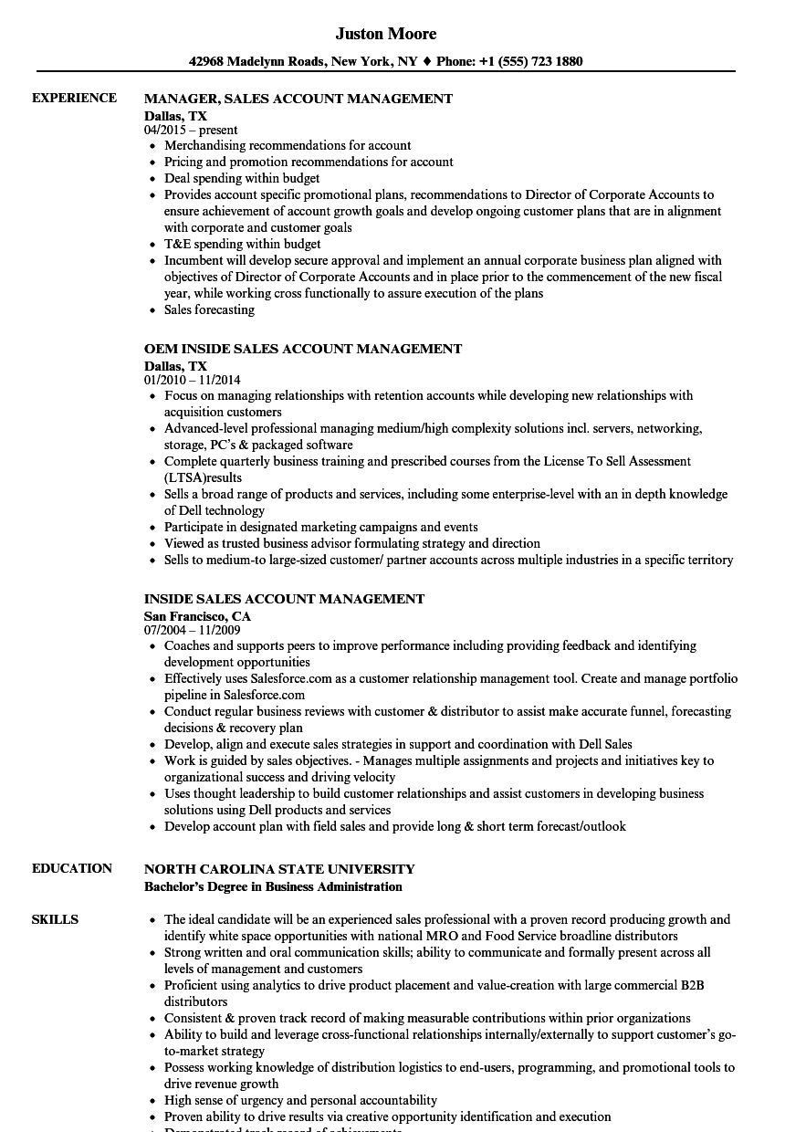 sales account management resume samples velvet jobs