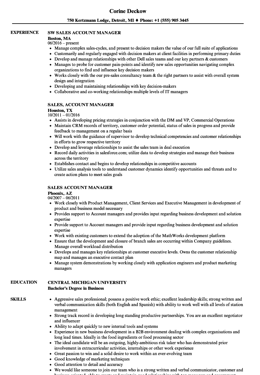 Sales Account Manager Resume Samples Velvet Jobs