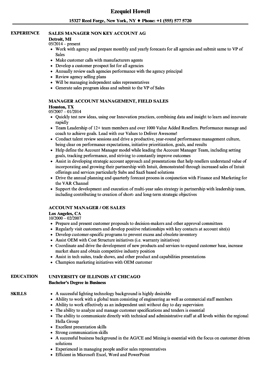 Sales Account Manager / Sales Manager Resume Samples | Velvet Jobs