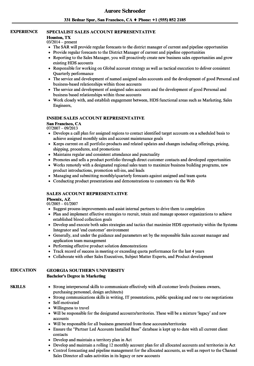 Sales Account Representative Resume Samples | Velvet Jobs