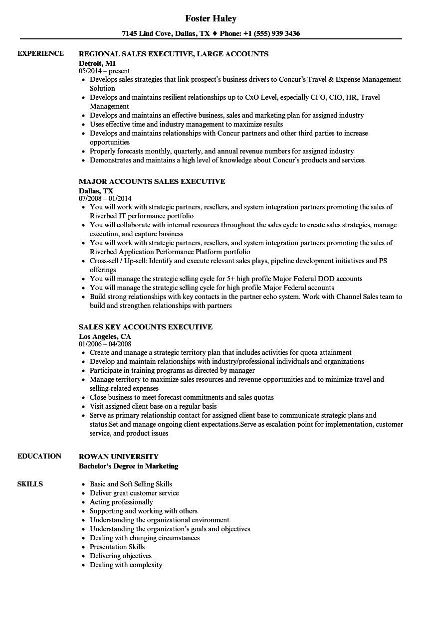 Sales & Accounts Executive Resume Samples | Velvet Jobs