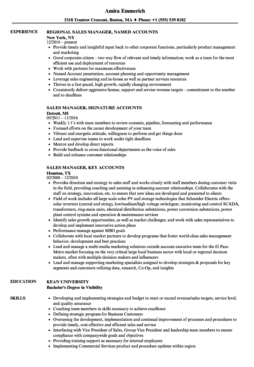 Sales Accounts Manager Resume Samples | Velvet Jobs