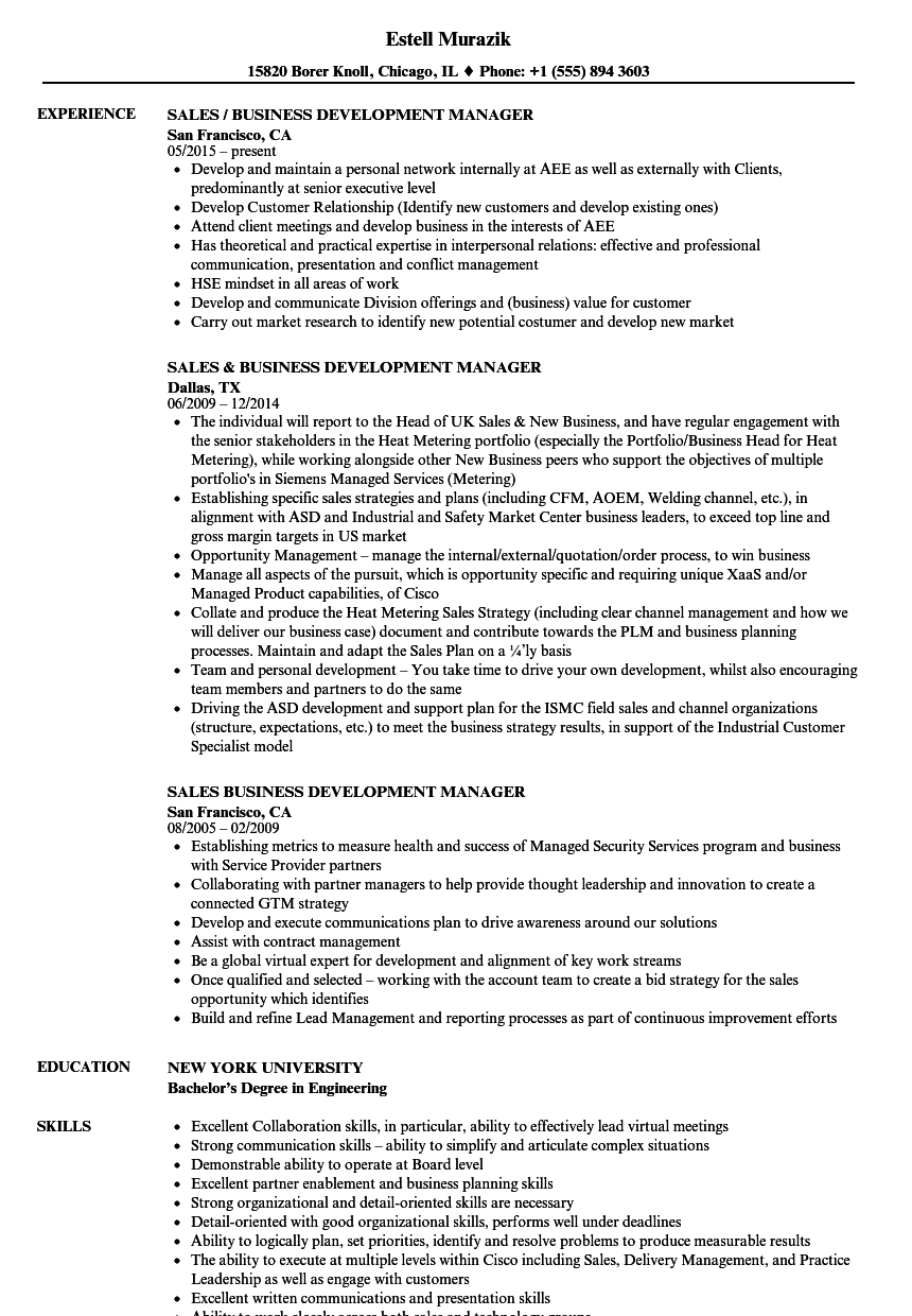 sample cv of business development manager