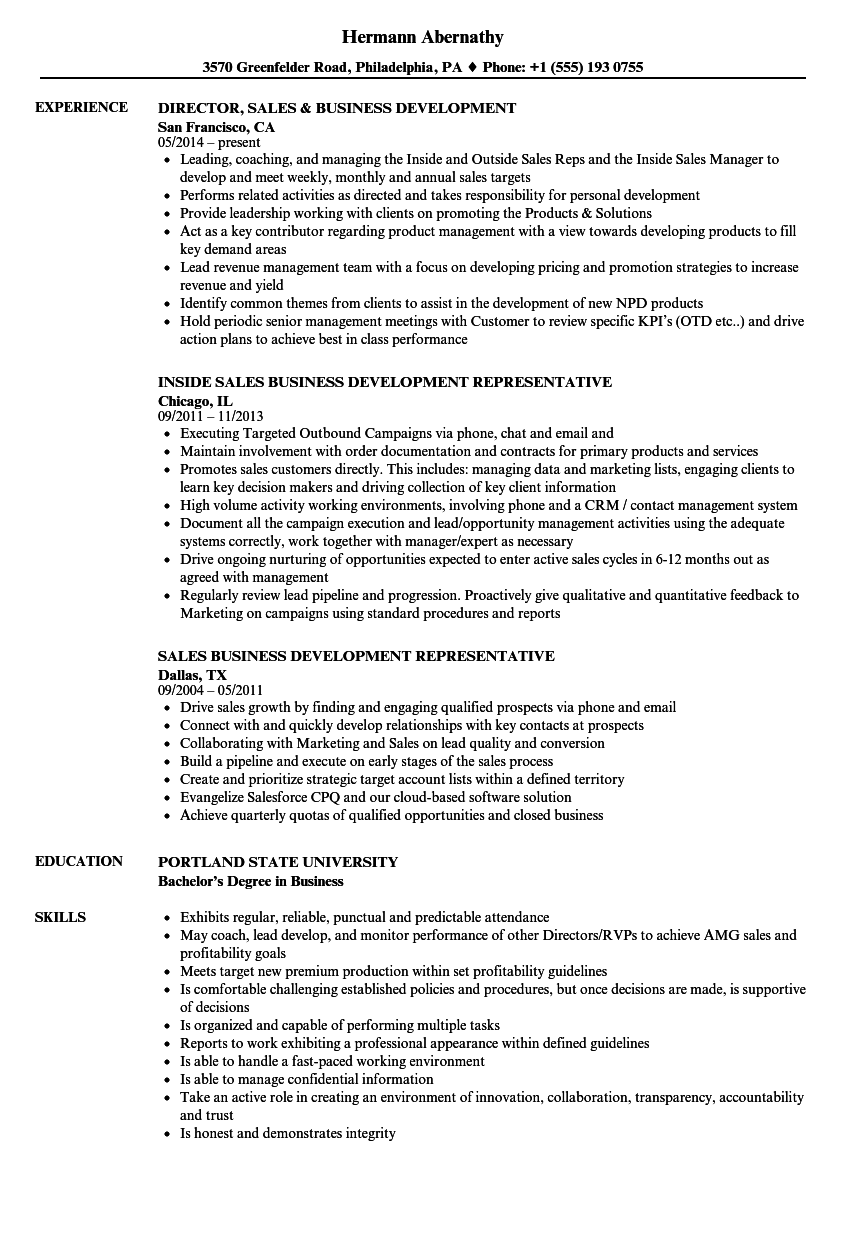 Download Sales U0026 Business Development Resume Sample As Image File