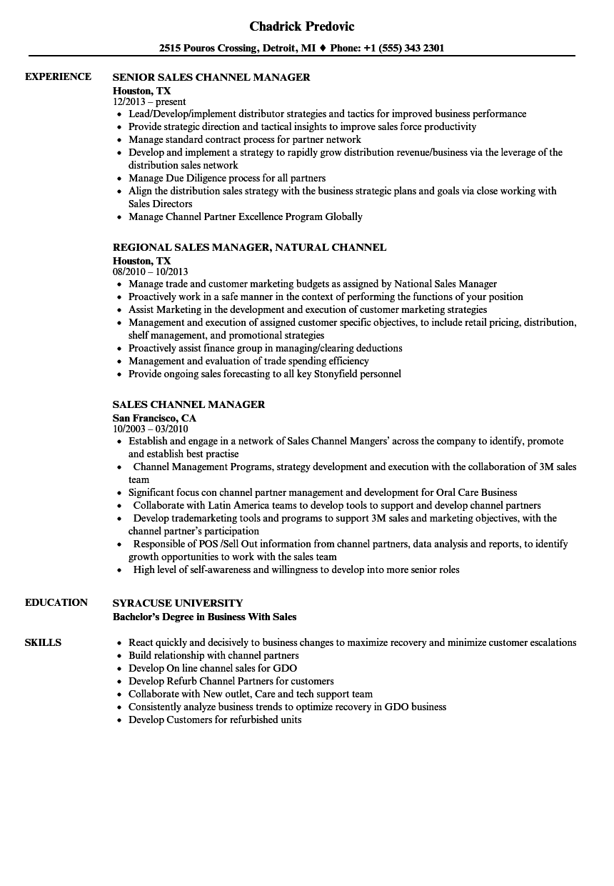 Sales Channel Manager Resume Samples