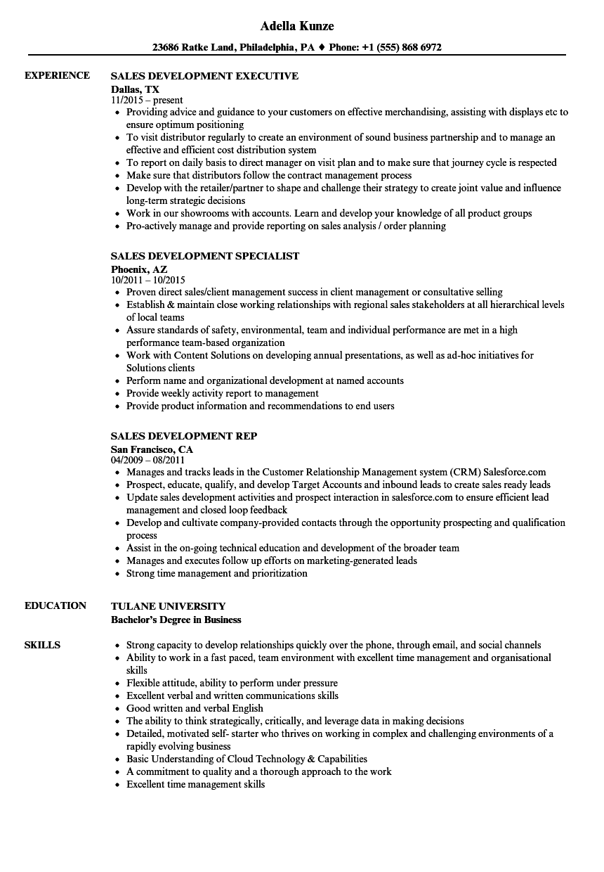 Sales Development Resume Samples | Velvet Jobs