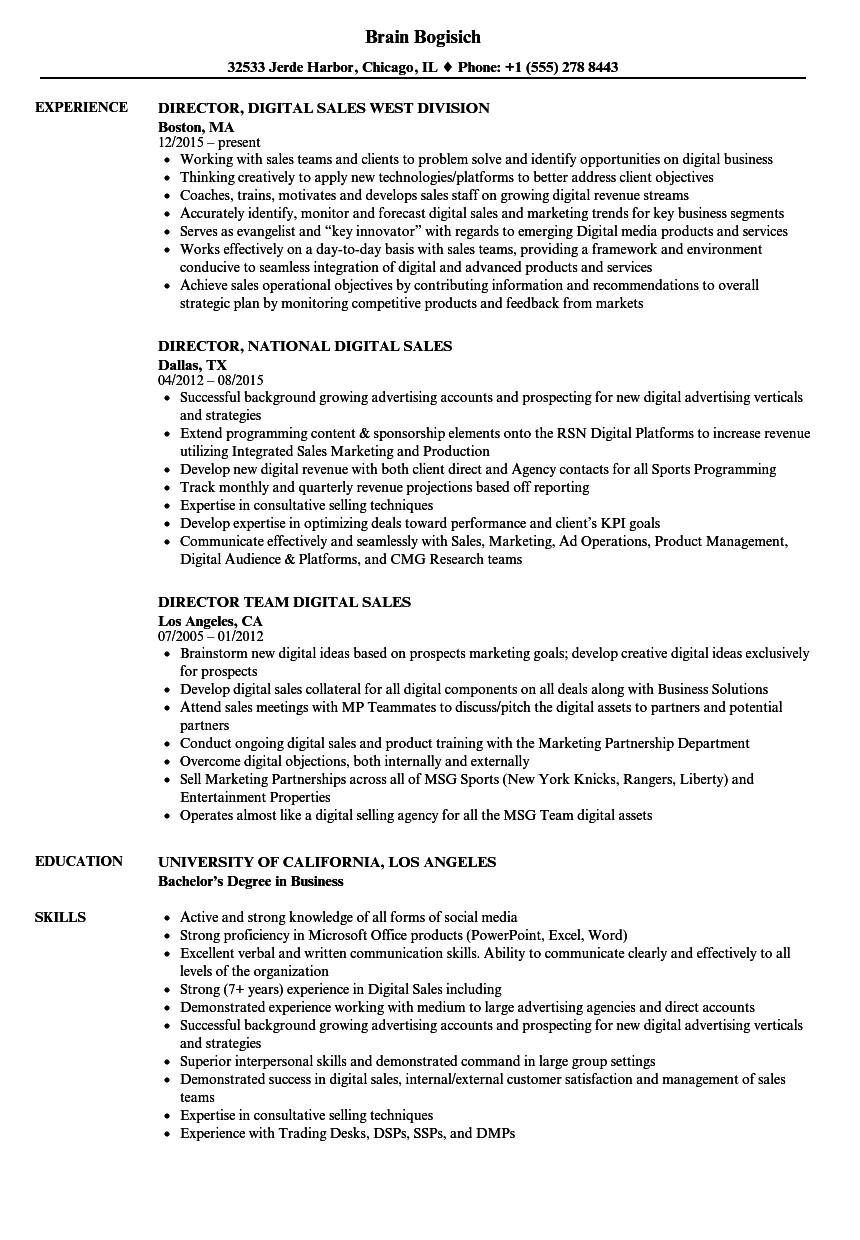 sales director  digital resume samples