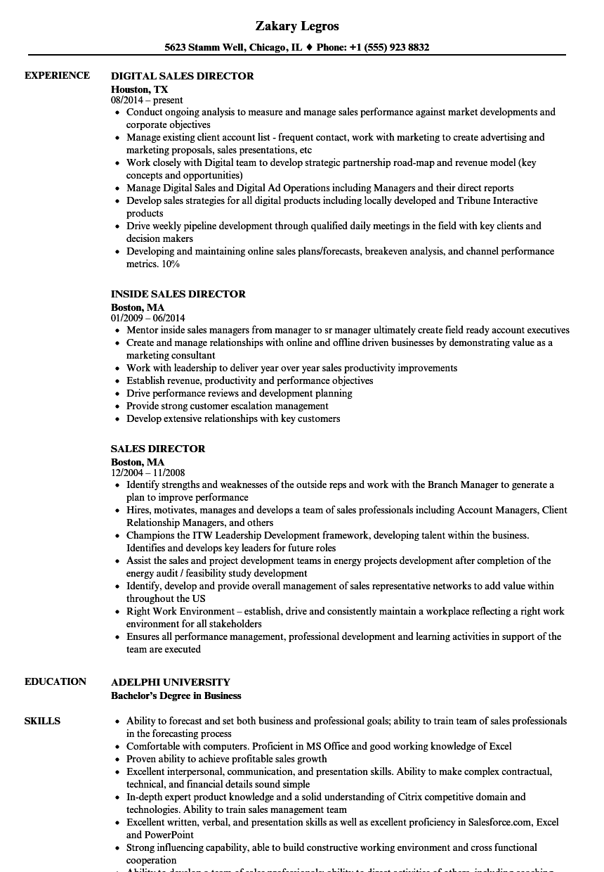 Sales Director Resume Samples | Velvet Jobs