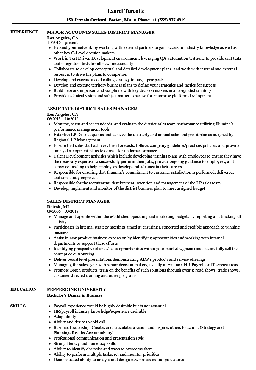 Download Sales District Manager Resume Sample As Image File  District Sales Manager Resume