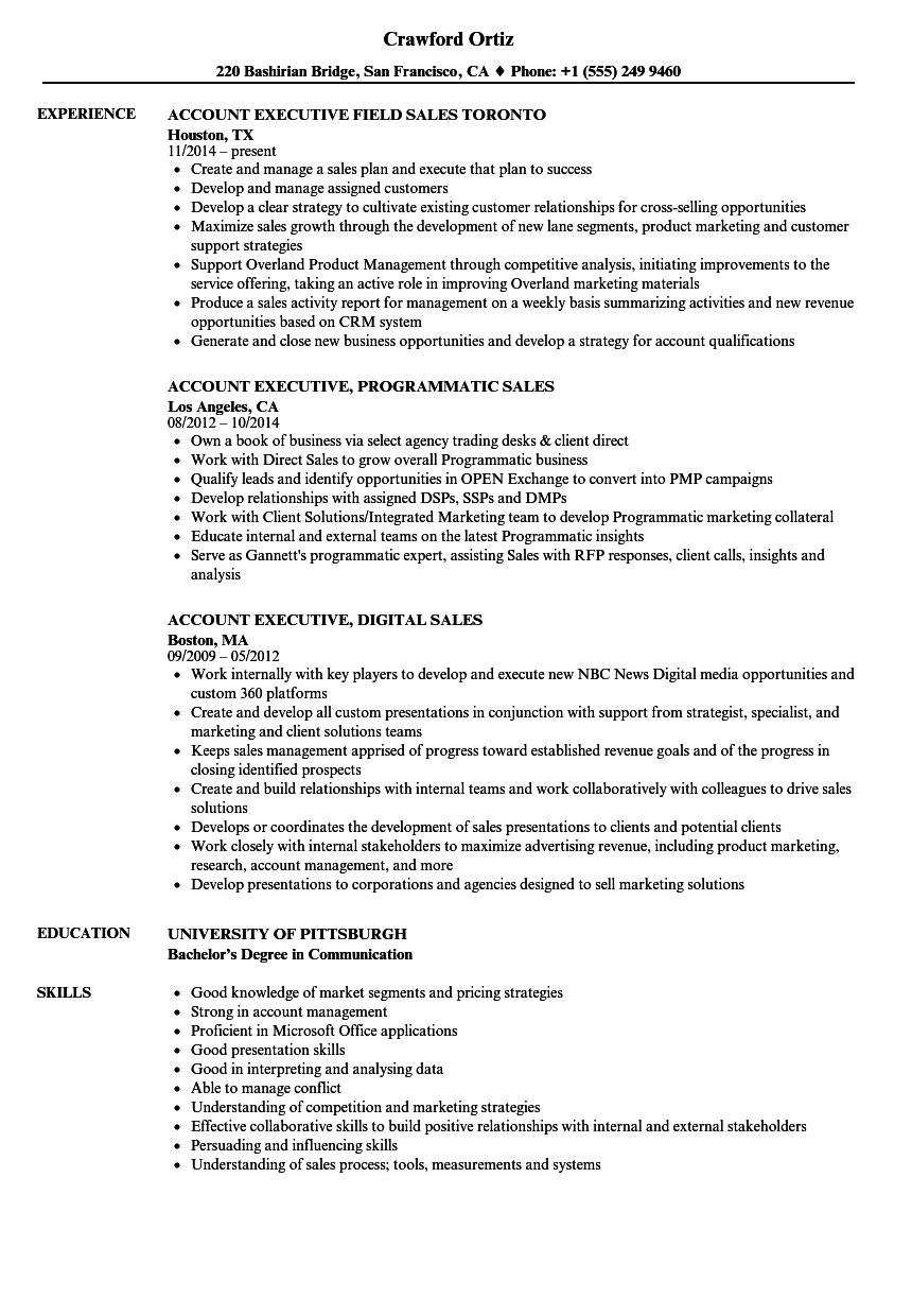download sales executive account executive resume sample as image file - Resume Format For Sales Executive
