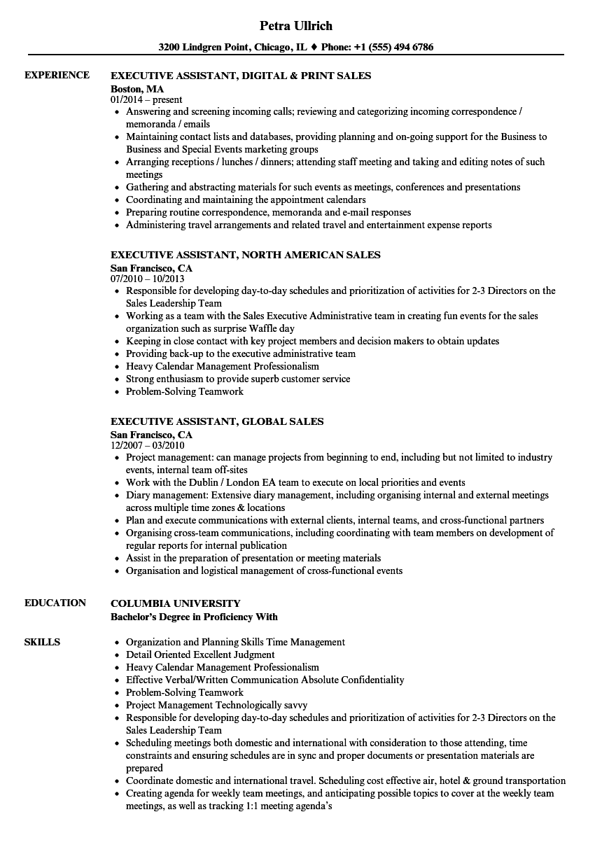 Sales Executive Assistant Resume Samples | Velvet Jobs