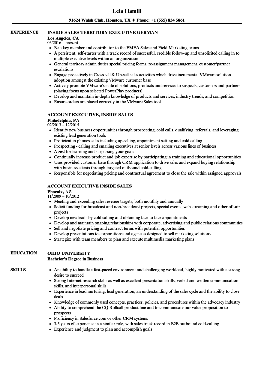 Sales Executive, Inside Sales Resume Samples | Velvet Jobs