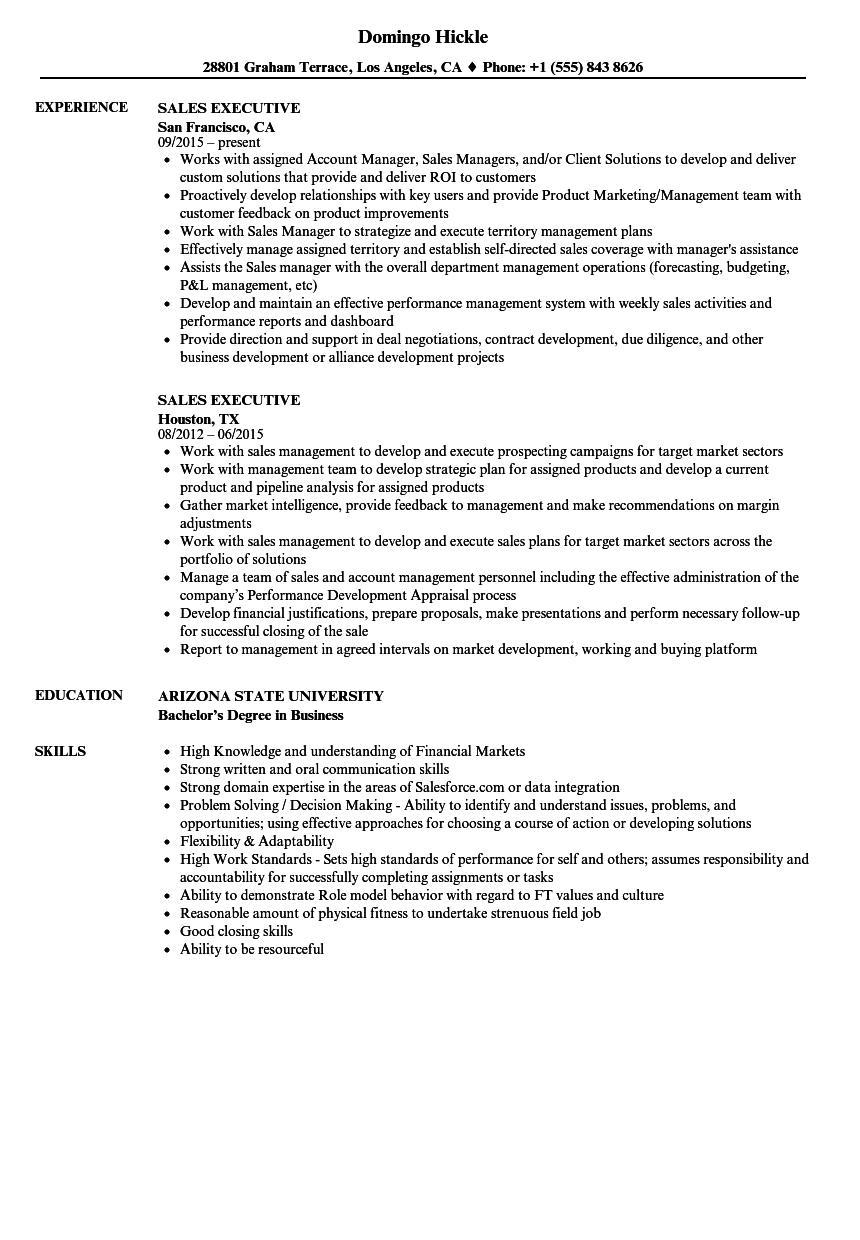 Sales Executive Resume Samples | Velvet Jobs