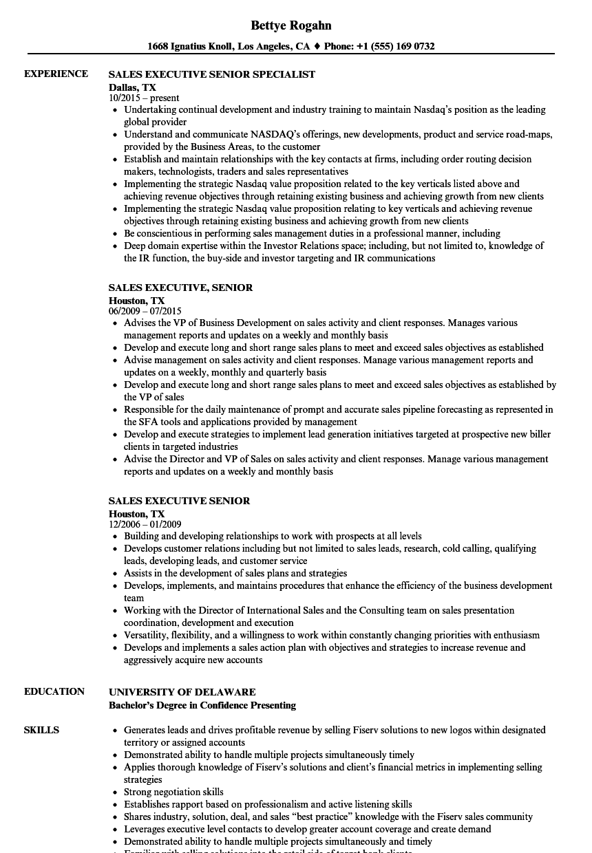 Sales Executive, Senior Resume Samples | Velvet Jobs