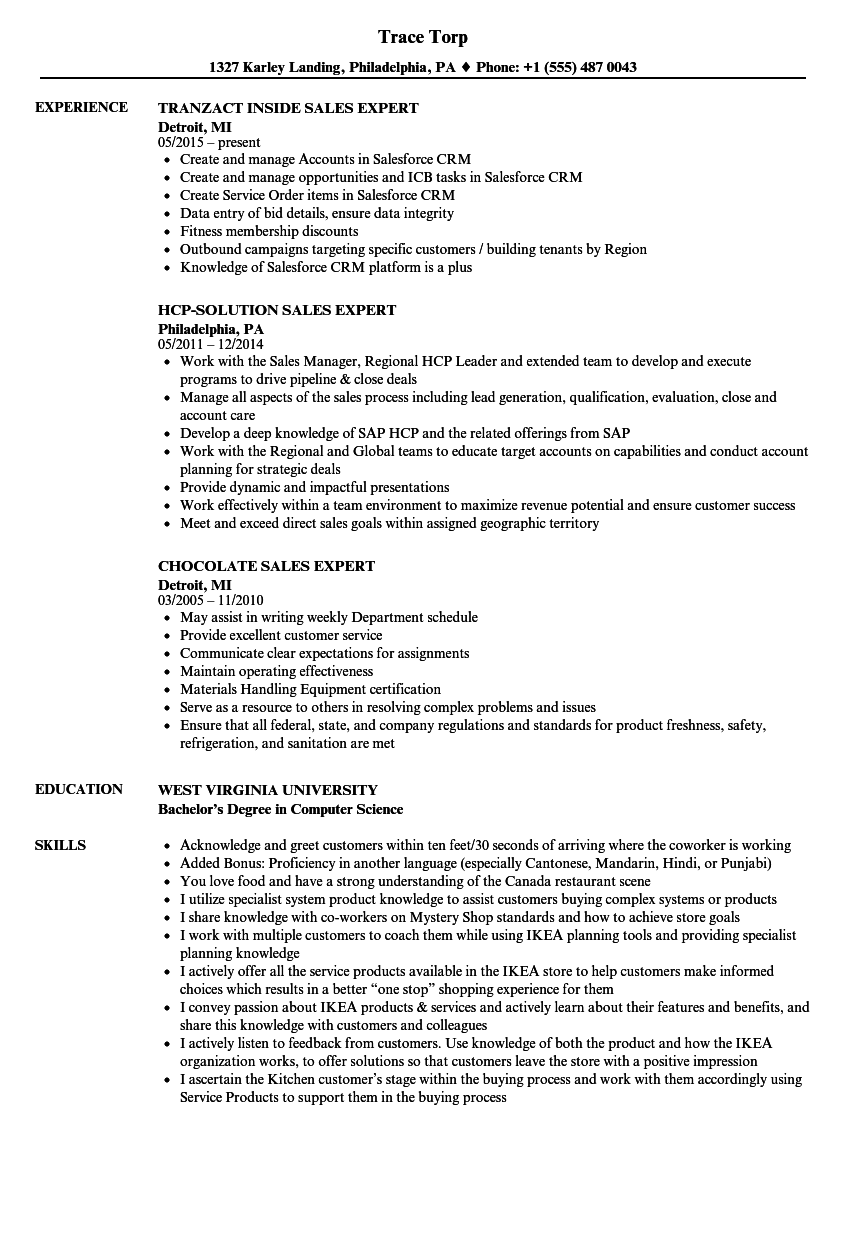 Sales Expert Resume Samples | Velvet Jobs