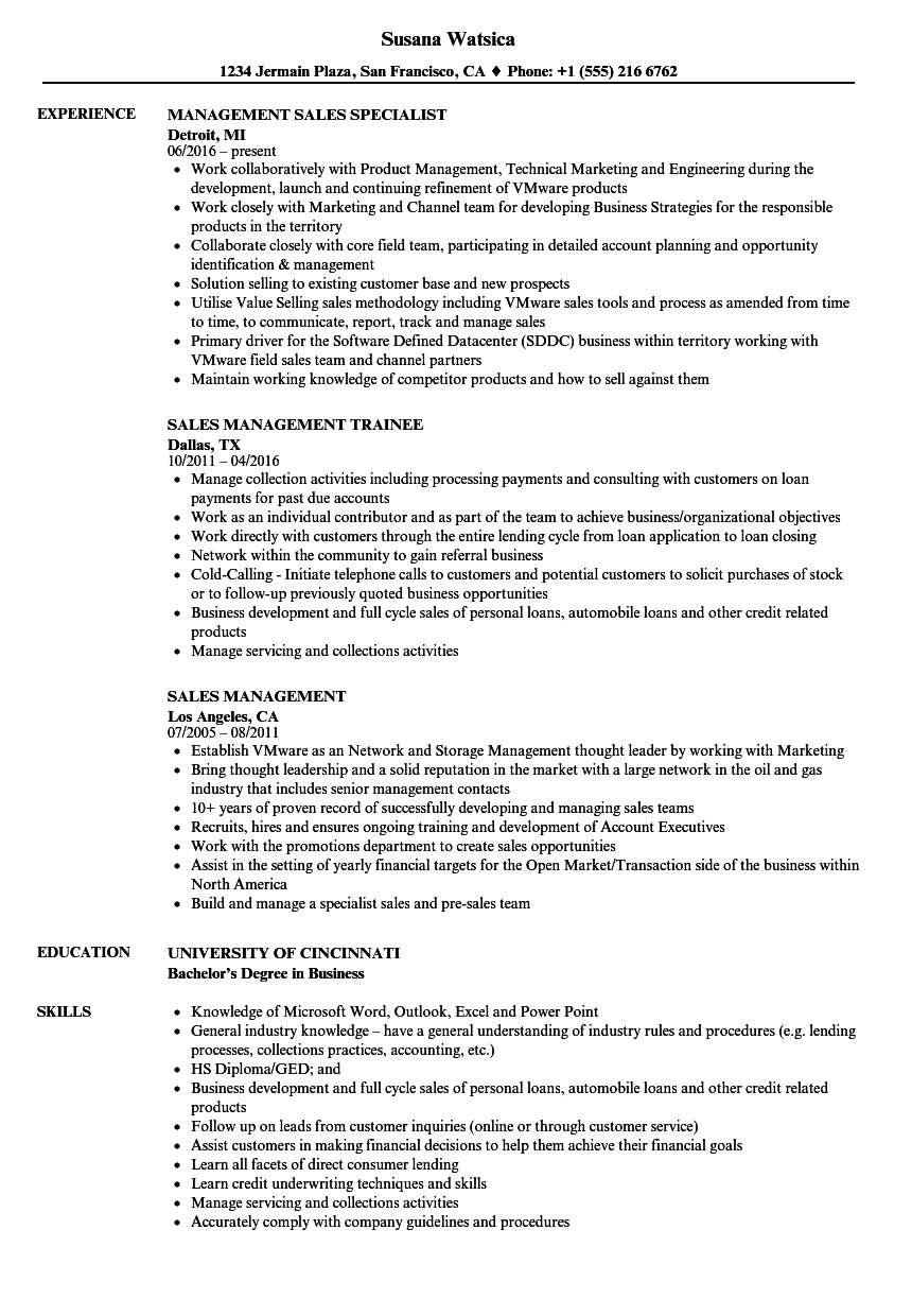 Sales & Management Resume Samples | Velvet Jobs
