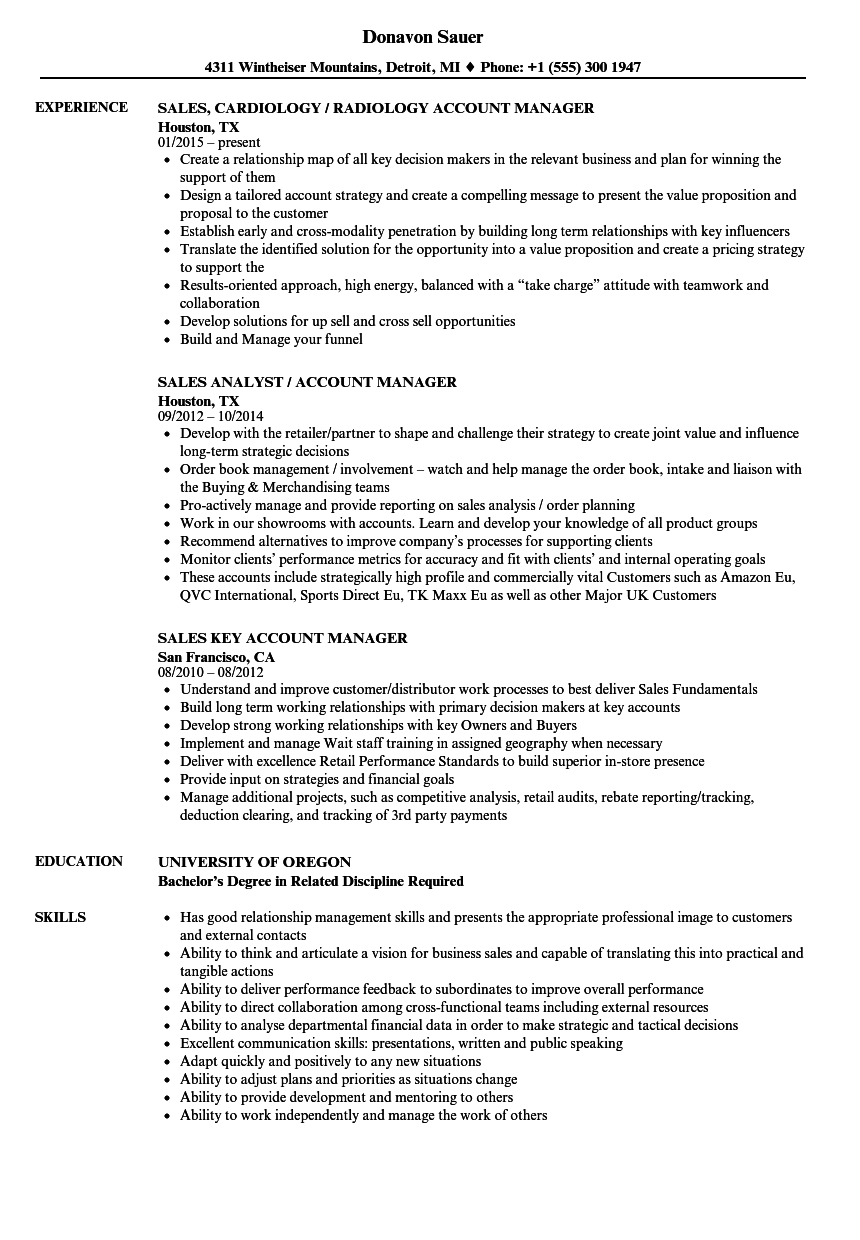 Sales Manager / Account Manager Resume Samples | Velvet Jobs