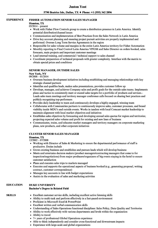 sales manager    senior sales manager resume samples