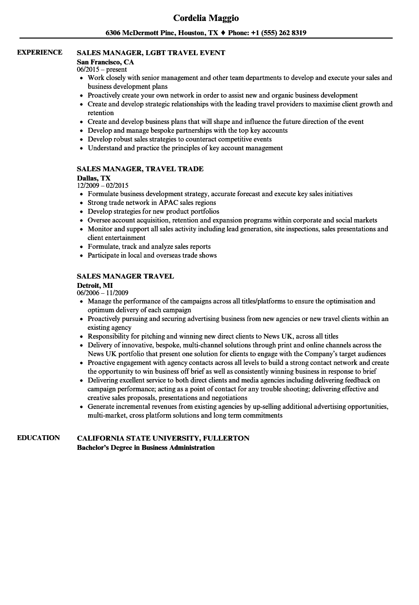 Download Sales Manager Travel Resume Sample As Image File