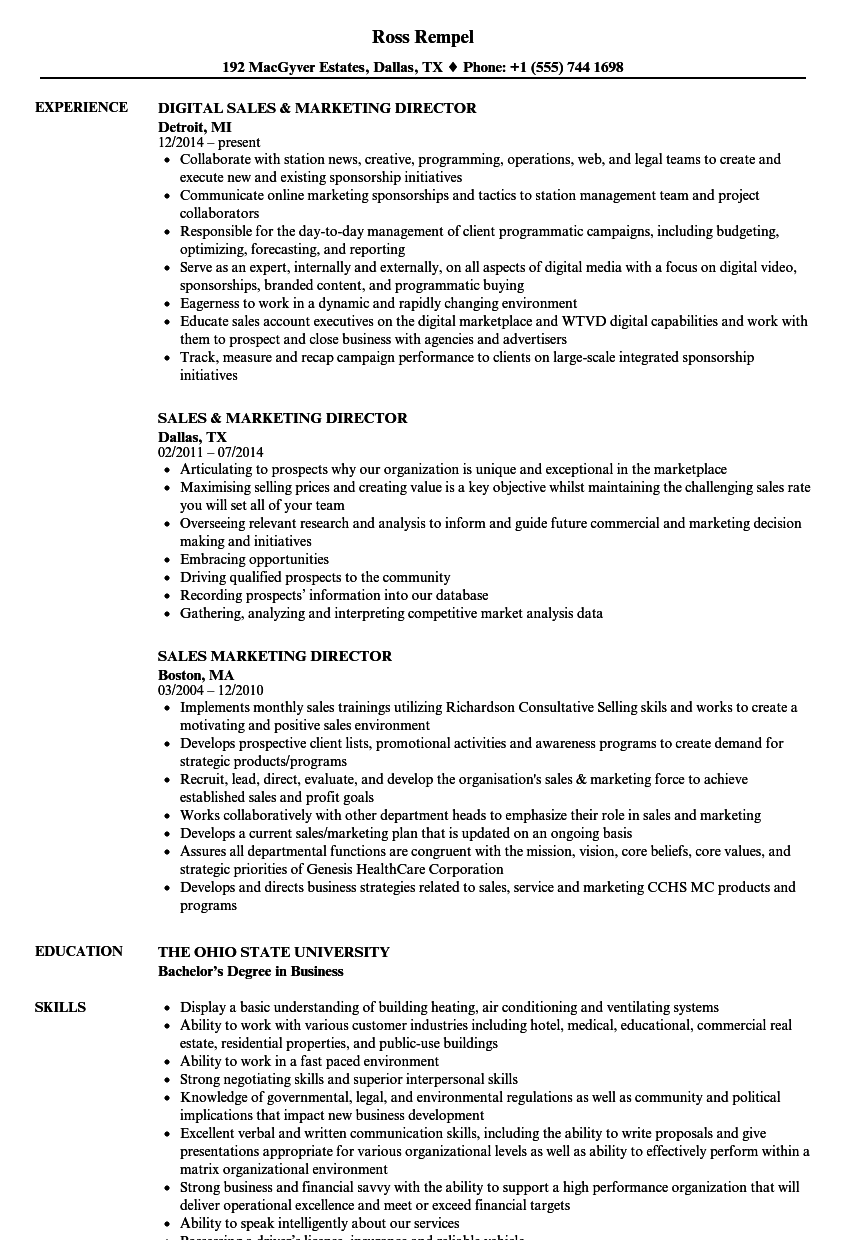 sales  u0026 marketing director resume samples