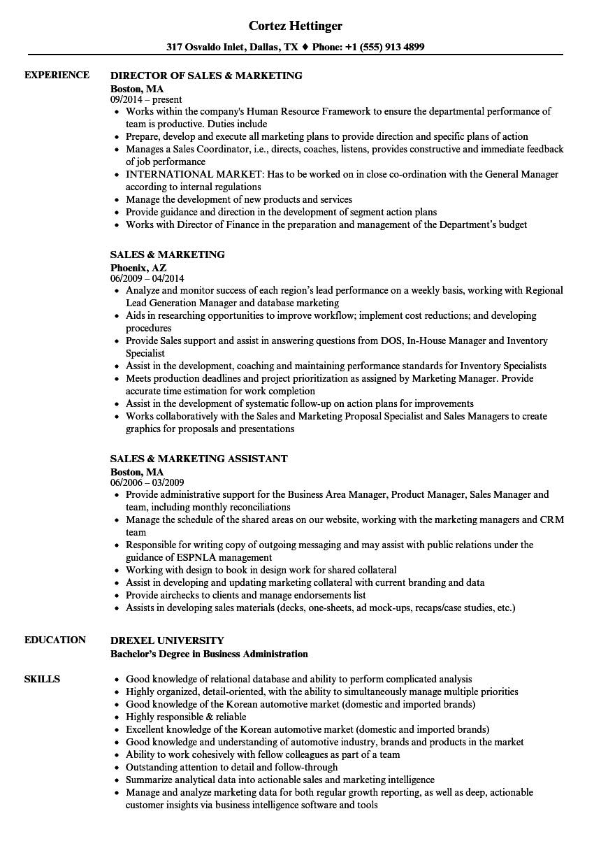 Sales  Marketing Resume Samples  Velvet Jobs